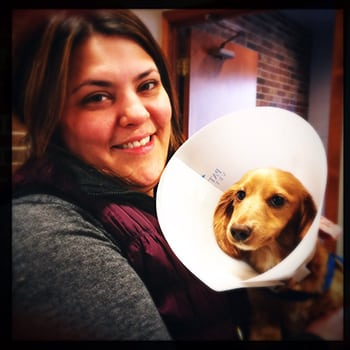woman holding dog with large cone
